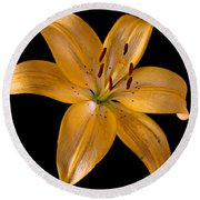 Round Beach Towel featuring the photograph Lily by Karen Harrison