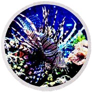 Round Beach Towel featuring the photograph Lion Fish At Oklahoma Aquarium 2005 by Toni Hopper