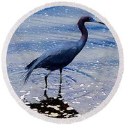 Round Beach Towel featuring the photograph Lit'l Blue by Elizabeth Winter