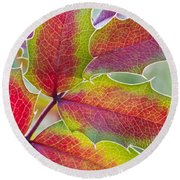 Little Bit Of Autumn Round Beach Towel