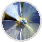 Round Beach Towel featuring the photograph Little Blue Flower by Kay Lovingood