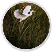 Round Beach Towel featuring the photograph Little Blue Heron On Approach by Steven Sparks