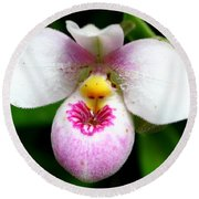Little White And Pink Orchid Round Beach Towel