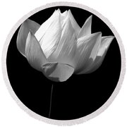 Lotus Bw Round Beach Towel