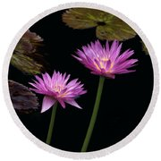 Lotus Water Lilies Round Beach Towel