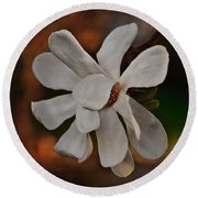 Round Beach Towel featuring the photograph Magnolia Bloom by Barbara McMahon