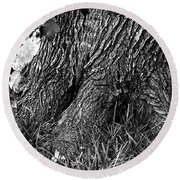 Round Beach Towel featuring the photograph Maple by Dan Wells