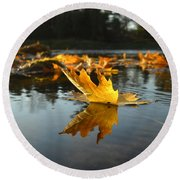 Maple Leaf Floating In River Round Beach Towel by Kent Lorentzen
