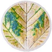Maple Leaf Round Beach Towel