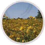 Meadow At Terapin Park Round Beach Towel