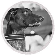 Round Beach Towel featuring the photograph Mesmerized by Eunice Gibb