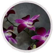 Miniature Orchids Round Beach Towel