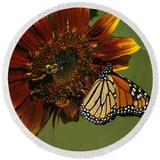 Monarch And The Bee Round Beach Towel