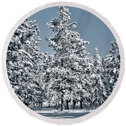 Round Beach Towel featuring the photograph Montana Christmas by Janie Johnson