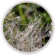 Round Beach Towel featuring the photograph Morning Dew by Lauren Radke