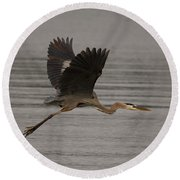 Round Beach Towel featuring the photograph Morning Flight by Eunice Gibb