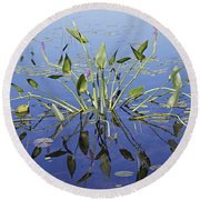 Morning Reflection Round Beach Towel by Eunice Gibb