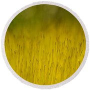 Moss In Yellow Round Beach Towel