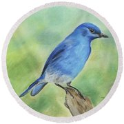 Mountain Bluebird Round Beach Towel