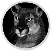 Round Beach Towel featuring the mixed media Mountain Lion by Kume Bryant