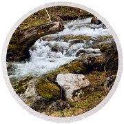 Round Beach Towel featuring the photograph Mountain Stream by Les Palenik