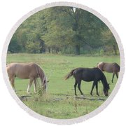 Round Beach Towel featuring the photograph Mowing The Lawn by Bonfire Photography