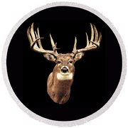 Mule Deer Head Round Beach Towel