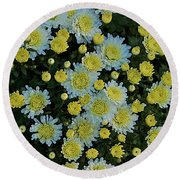 Round Beach Towel featuring the photograph Mums by Joseph Yarbrough