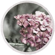 Mystic Yarrow Round Beach Towel