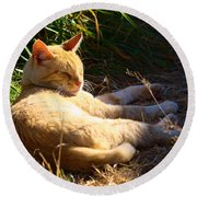 Napping Orange Cat Round Beach Towel
