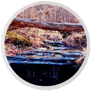 Round Beach Towel featuring the photograph Natural Spring Beauty  by Peggy Franz