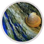 Nature's Abstract Round Beach Towel by Lori Seaman