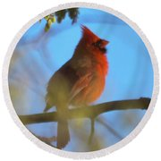 Northern Cardinal Round Beach Towel