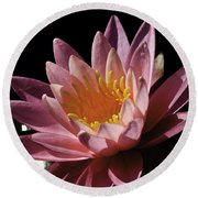 Nymphaea 'sunny Pink' Round Beach Towel