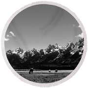 Round Beach Towel featuring the photograph Oblivious by Dan Wells