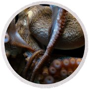 Octopus 1  Round Beach Towel
