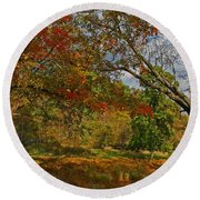 Old Tree And Foliage Round Beach Towel