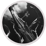 Round Beach Towel featuring the photograph Old Tree by David Gleeson