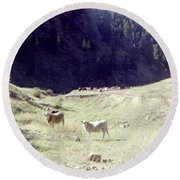Round Beach Towel featuring the photograph Open Range by Bonfire Photography