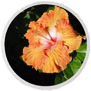 Orange Hibiscus After The Rain 1 Round Beach Towel by Connie Fox