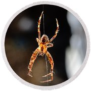 Orange Spider Round Beach Towel