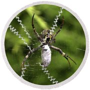 Round Beach Towel featuring the photograph Orb Weaver by Joy Watson