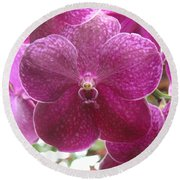 Orchid Cluster Round Beach Towel