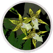 Orchid Trilogy Round Beach Towel