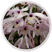 Round Beach Towel featuring the photograph Orchids Beauty by Donna Brown