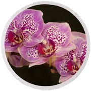 Orchids Round Beach Towel by Eunice Gibb