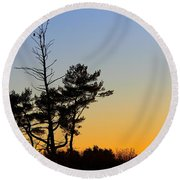 Round Beach Towel featuring the photograph Out On A Limb by Davandra Cribbie