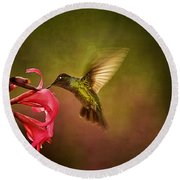 Round Beach Towel featuring the photograph Painterly Hummingbird #1 by Anne Rodkin