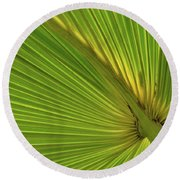 Round Beach Towel featuring the photograph Palm Leaf II by JD Grimes