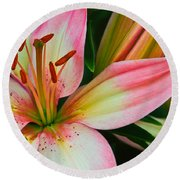 Round Beach Towel featuring the photograph Pastel Pretty by Lynne Jenkins